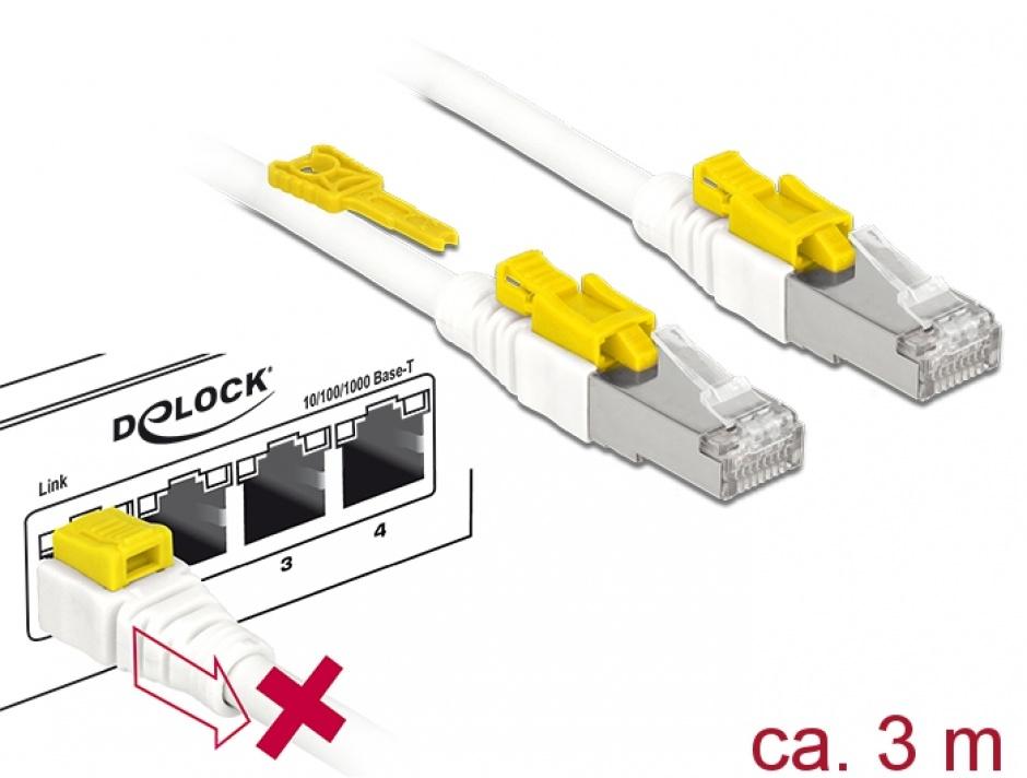 Imagine Cablu de retea RJ45 cat 6A cu sistem de blocare 3m, Delock 85333