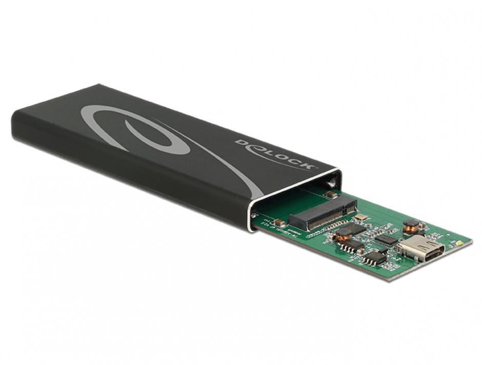 Imagine Rack extern M.2 SSD key B 60 mm la USB 3.1 tip C, Delock 42573
