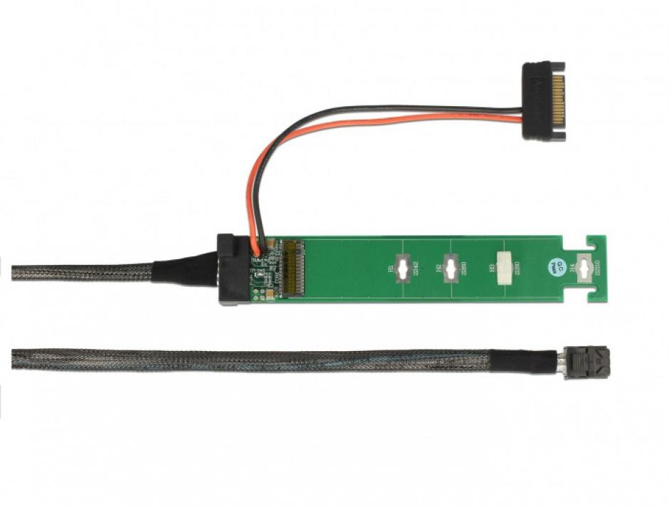 Imagine Convertor SFF-8643 la 1 x M.2 NVMe Key M + cablu 1m, Delock 63342-3