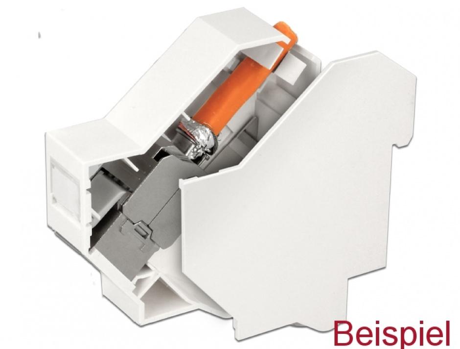 Imagine Protectie alba pentru montarea Keystone-ului in DIN rail, Delock 86272