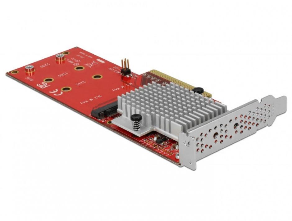 Imagine PCI Express cu 2 porturi interne NVMe M.2 Key M LPFF, Delock 90305-4