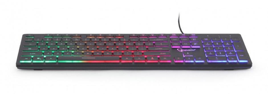 Imagine Tastatura multimedia USB Rainbow, Gembird KB-UML-01-1