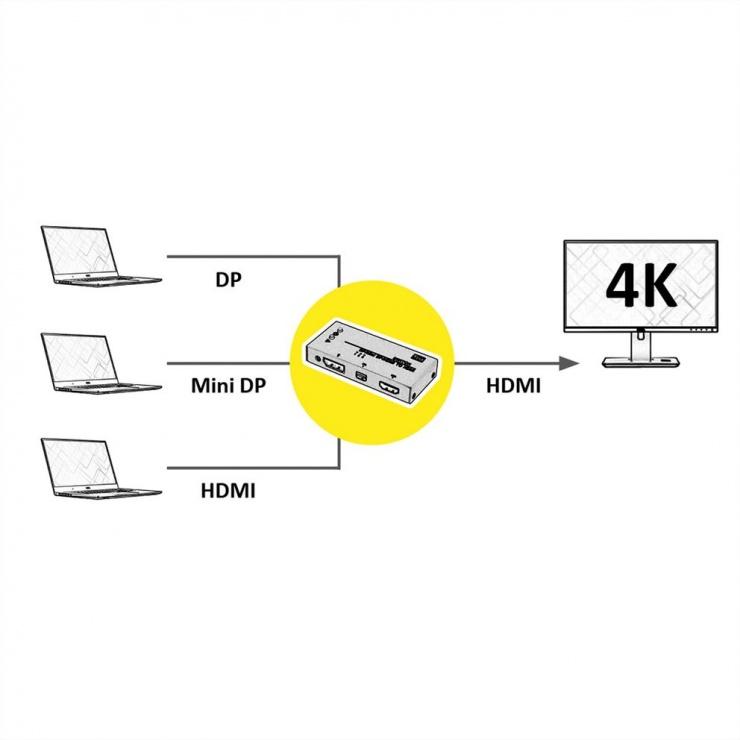Imagine Switch HDMI / Mini DisplayPort/ DisplayPort la HDMI, Value 14.99.3541