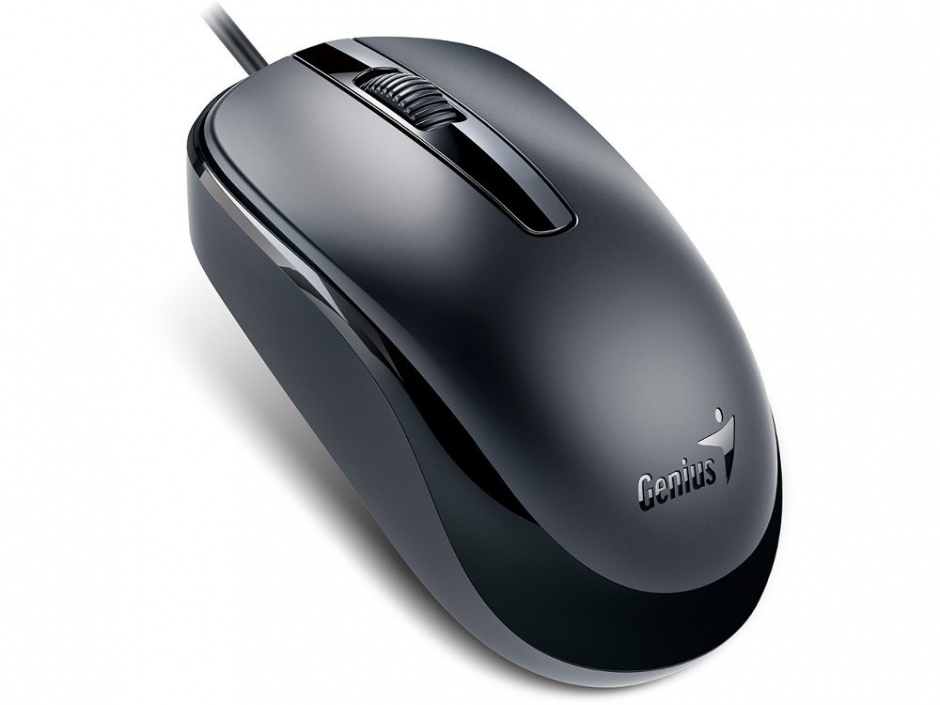 Imagine Mouse Genius DX-120 Black USB, Genius