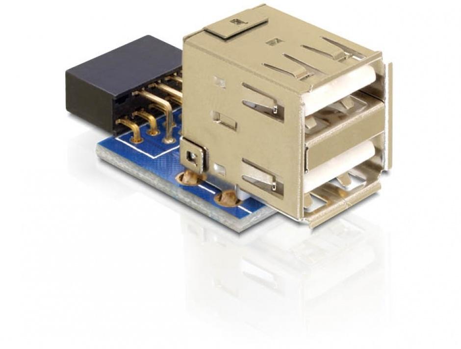 Imagine Adaptor intern 2 porturi USB 2.0, Delock 41825