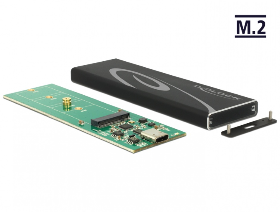 Imagine Rack extern M.2 SSD key B 80 mm la USB 3.1 tip C, Delock 42574
