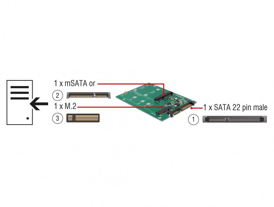 Imagine Convertor SATA 22 pini la 1 x M.2 NGFF + 1 x mSATA, Delock 62670