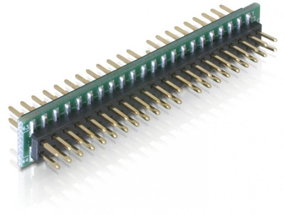 Imagine Adaptor 44 pini IDE la 44 pini IDE T-T, Delock 65090