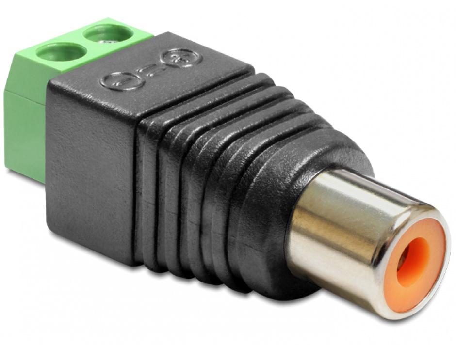 Imagine Adaptor RCA Mama la Bloc Terminal 2 pini, Delock 65418