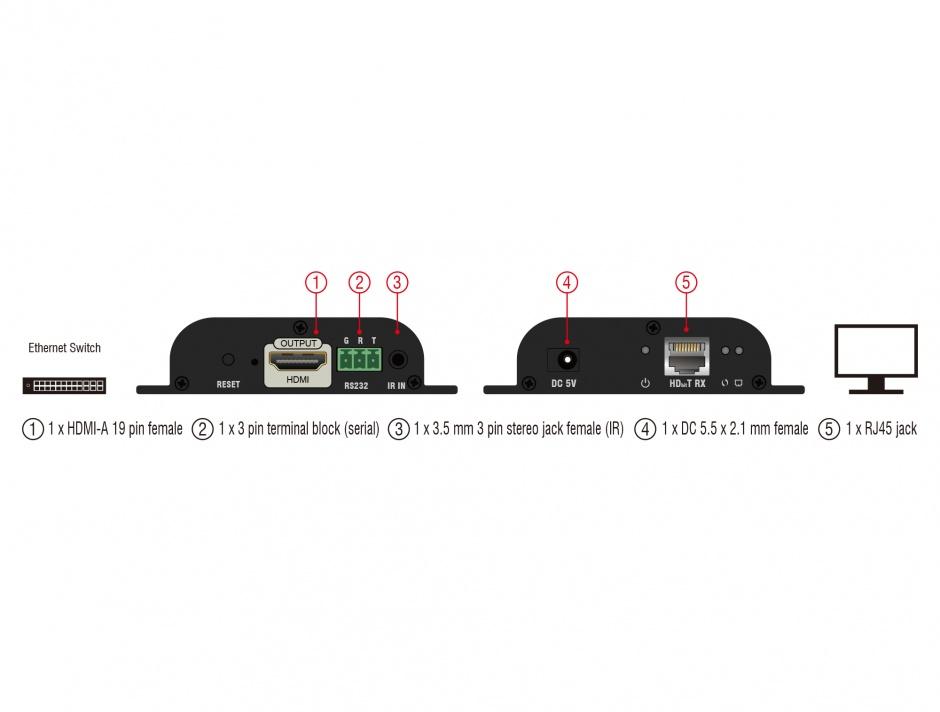 Imagine Receiver HDMI pentru video over IP, Delock 65944