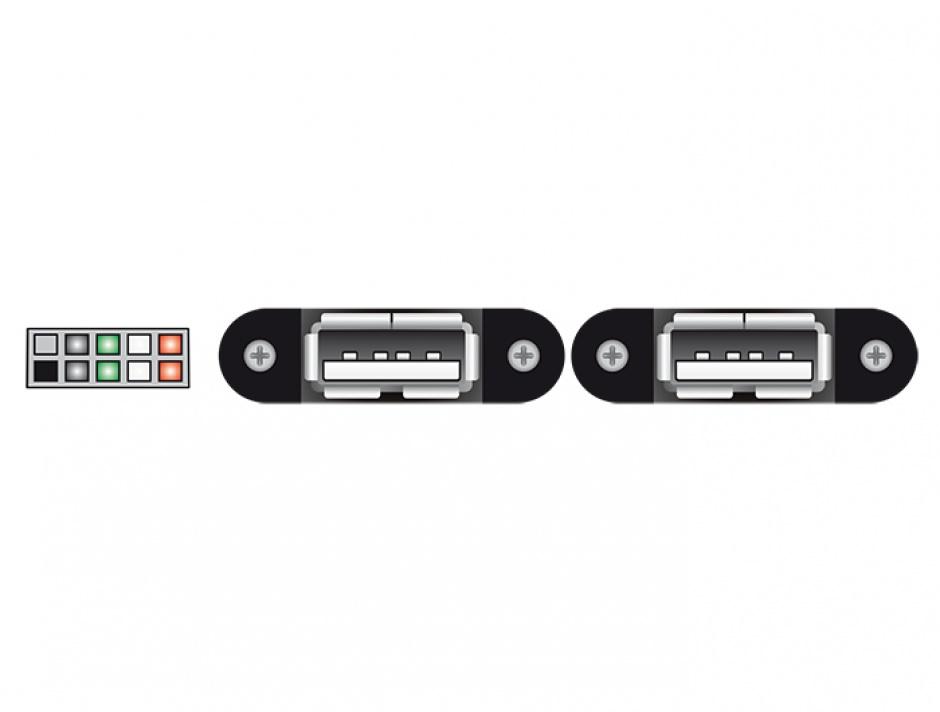 Imagine Cablu USB 2.0 pin header female 2.00 mm 10 pini la 2 x USB 2.0-A 25cm, Delock 84832