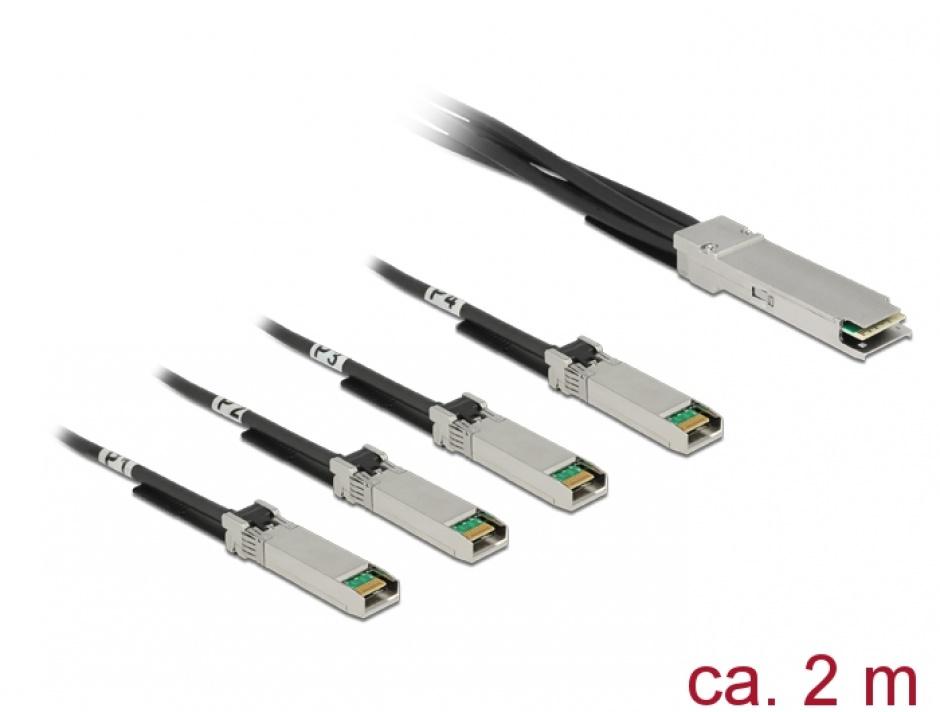 Imagine Cablu Twinax QSFP28 la 4 x SFP28 2m, Delock 86432