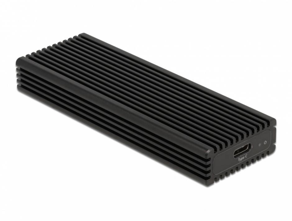 Imagine Rack extern combo USB type C pentru SSD M.2 PCIe/NVME sau SATA, Delock 42004