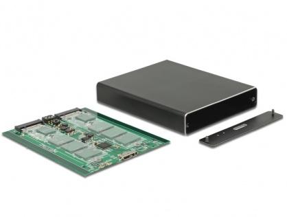 Rack extern USB 3.1 la 2 x M.2 Key B cu RAID, Delock 42588