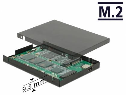 """Rack extern 2.5"""" USB 3.1-C la M.2 + mSATA pana la 9.5mm, Delock 62986"""