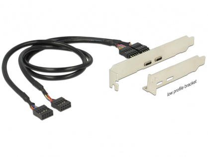 Bracket pin header USB 2.0 la 2 x USB tip C Low Profile, Delock 84754