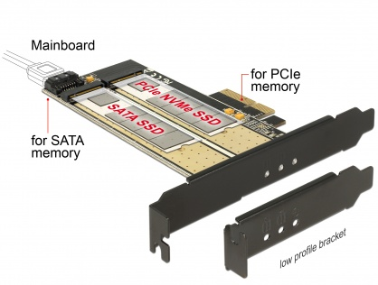 PCI Express la 1 slot M.2 Key B + 1 slot NVMe M.2 Key M, Delock 89630
