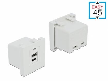 Modul Easy 45 de incarcare cu 1 x USB-A + 1 x USB-C, Delock 81313