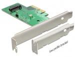 PCI Express la 1 x M.2 NGFF NVMe intern, Delock 89370